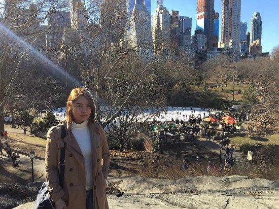 Central Park Tours: Central Park