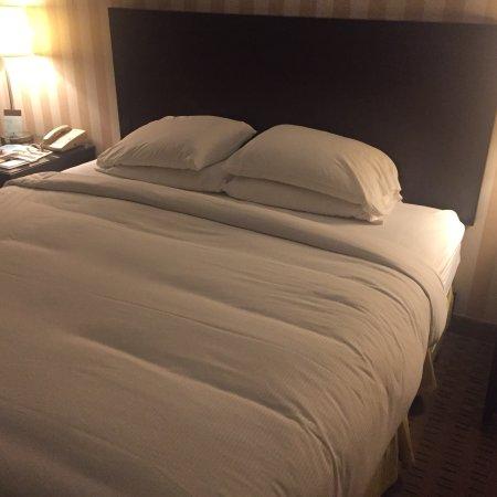 聖地亞哥市中心希爾頓逸林酒店照片