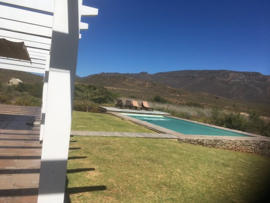 Amathunzi Private Nature Reserve: lie by the pool and watch zebra and girraff grazing