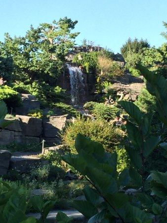 Montreal Botanical Gardens: Falls In Botanical Gardens