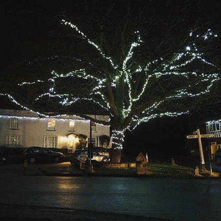 Brenchley village Christmas tree