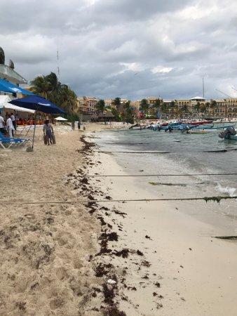 "El Taj Oceanfront & Beachside Condos Hotel: The ""beach"""