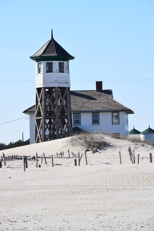 Corolla Wild Horse Fund, Inc. Tours: lookout tower