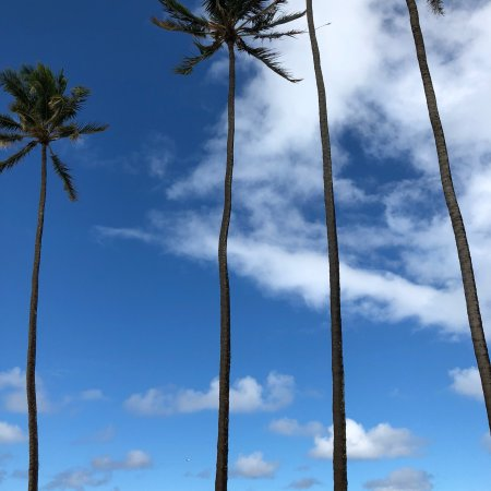 Paia, Hawái: HA Baldwin Beach Park