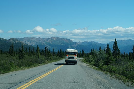 Denali: Park bus you take if you go the full park road