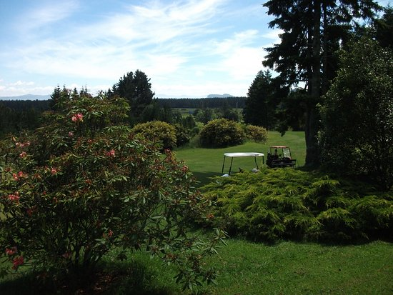 Turangi, Nueva Zelanda: Above the 7th overlooking 8th tee