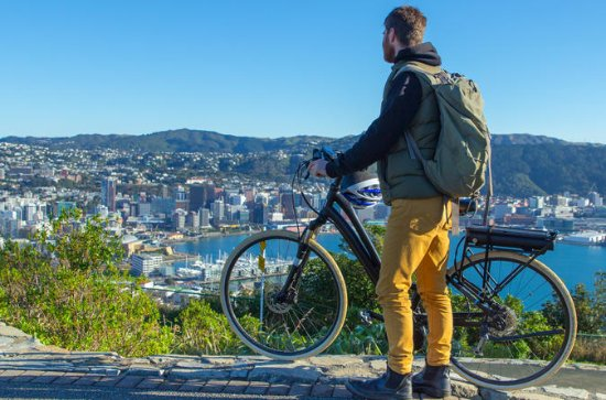 Full-Day Wellington Self-Guided...