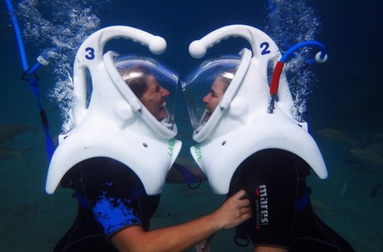 40-minute Lanzarote Sea Trek Diving Experience