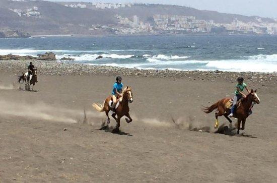 Balade à cheval sur la plage en...