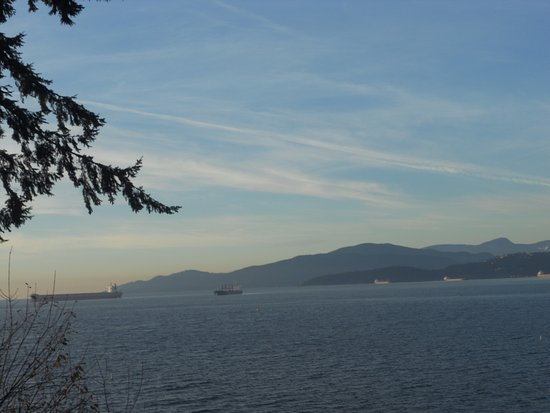 Teahouse in Stanley Park: tankers in english bay
