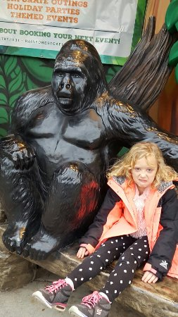 Rainforest Cafe: It brings out the animal in you.