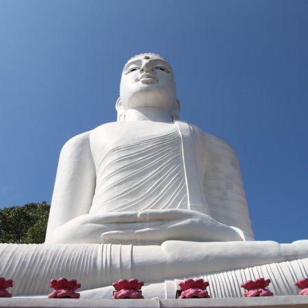Blue Lanka Tours