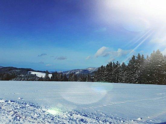 Neukirch, Niemcy: IMG-20171229-WA0001_large.jpg