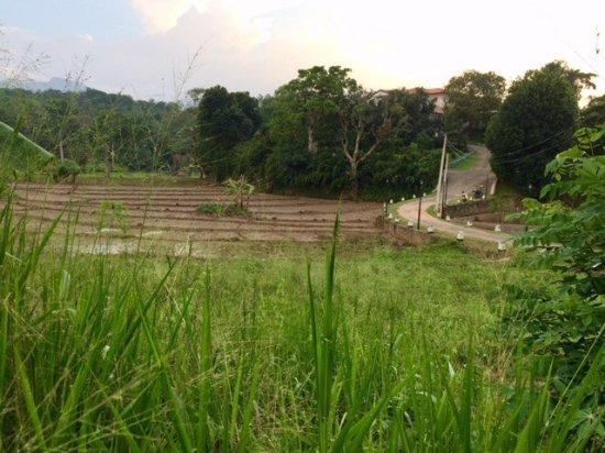 Godakawela, Sri Lanka: Directe omgeving