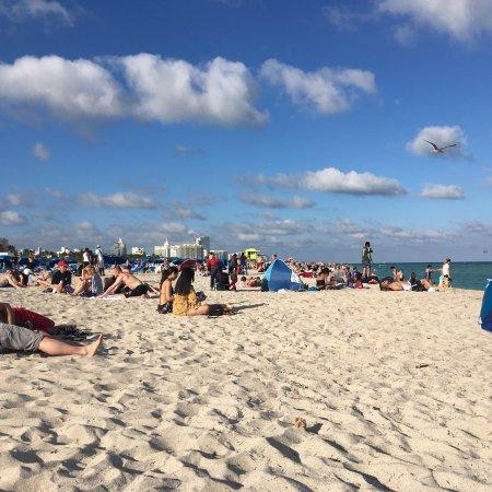 Beach Park Hotel照片