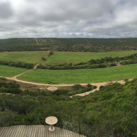 Addo, África do Sul: photo0.jpg