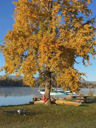 Bigfork, MT: Fall on the river