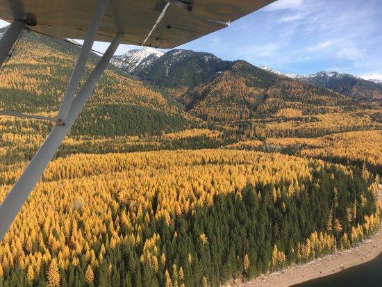 Bigfork, MT: Beautiful fall day