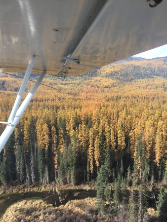 Bigfork, MT: Fall in the Flathead
