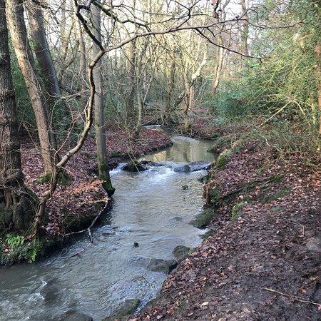 Meanwood Valley Trail: photo4.jpg