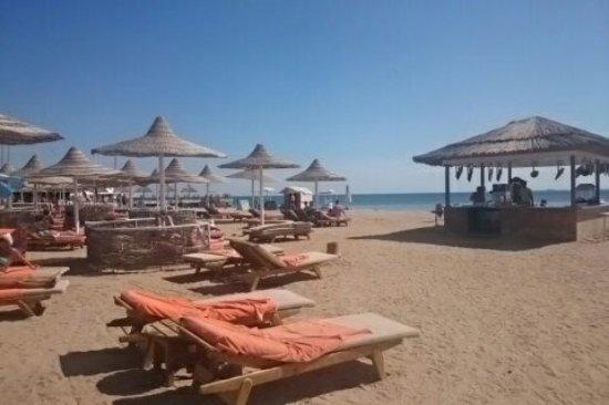 Siva Grand Beach Hotel Hurghada Reviews