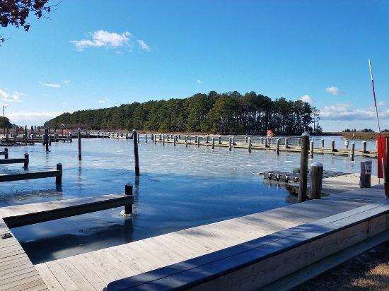 Janes Island State Park: 20180101_104300_large.jpg