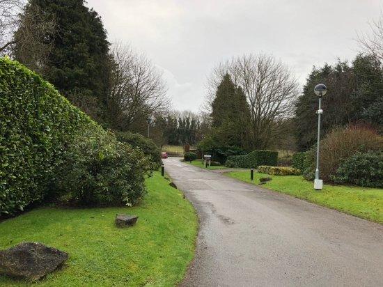 Redbourn, UK: IMG-20180101-WA0006_large.jpg