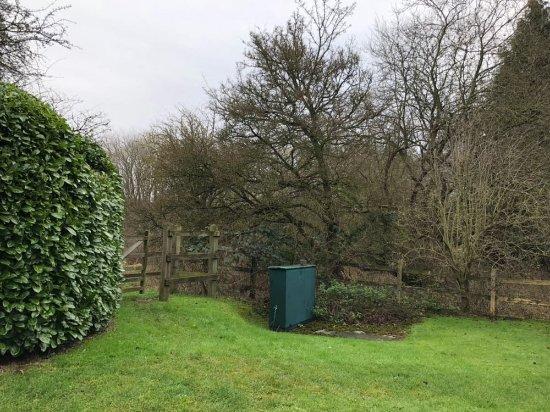 Redbourn, UK: IMG-20180101-WA0005_large.jpg