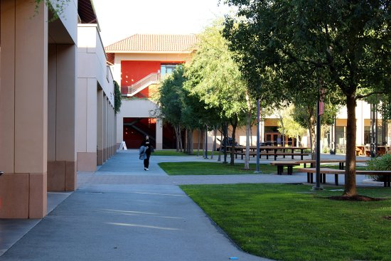 Stanford University: All food places were closed on Saturday