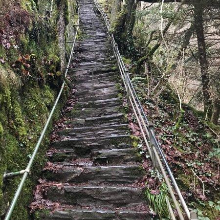 Devil's Bridge (Pontarfynach)