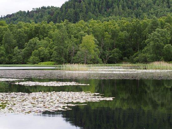 Aviemore, UK: .Loch