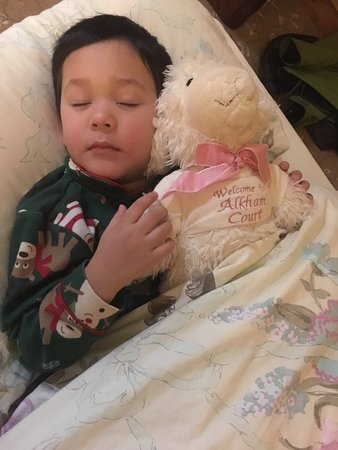 Alkham Court Farmhouse: My son loved the sheep