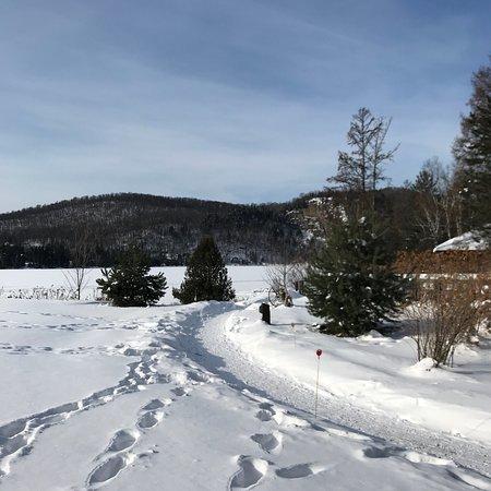Lac-Superieur, Canada: Tremblant Elysium