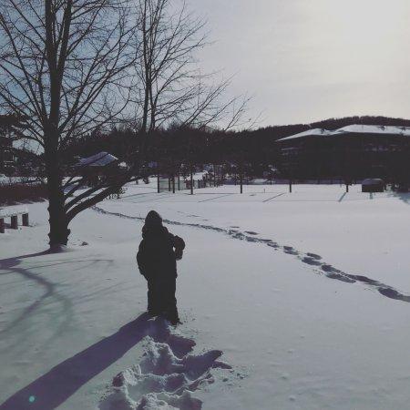 Lac-Superieur, كندا: Tremblant Elysium