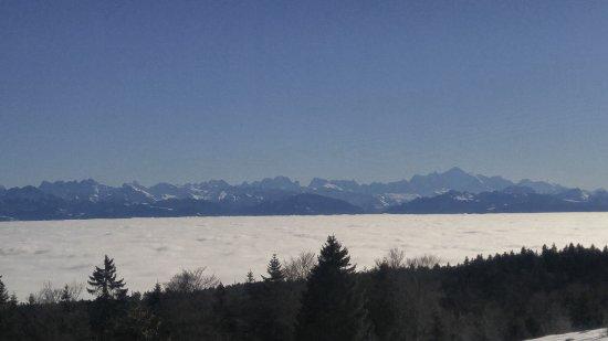 Vaud, Suiza: Горы - это уже Франция. Швейцария скрыта под белыми облаками. Облака ниже нас. Удивительно.
