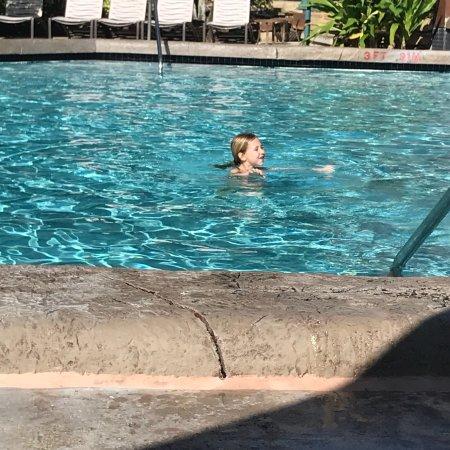 Dolphin Beach Resort Florida Tripadvisor