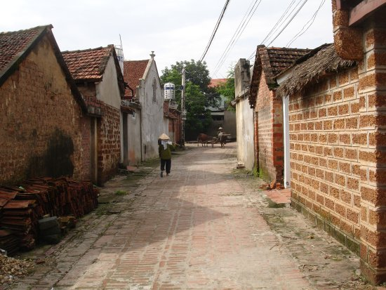 Hanoi Eco Tour - Day Tour: A street in Duong Lam village