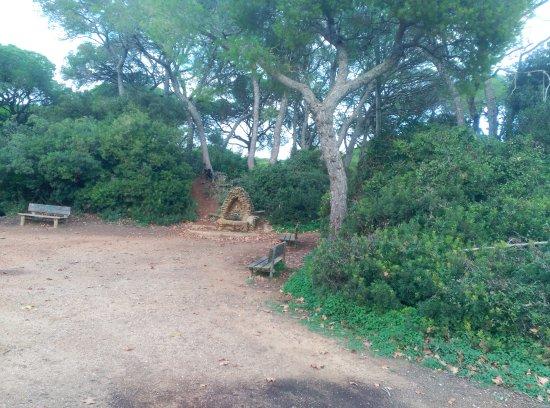 Parque de las canteras fotograf a de parque de las canteras puerto real tripadvisor - Las canteras puerto real ...
