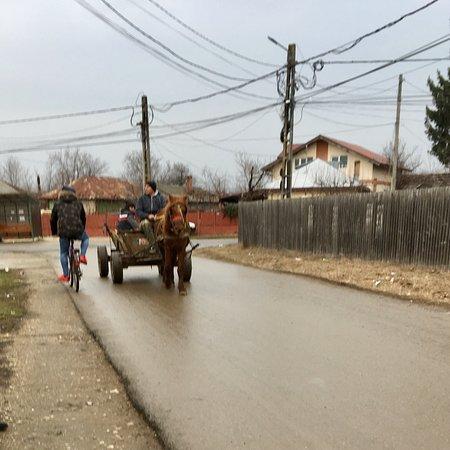 Snagov, Romania: photo1.jpg