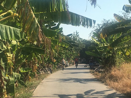 SpiceRoads Cycle Tours - Day Tours : Bangkok Countryside