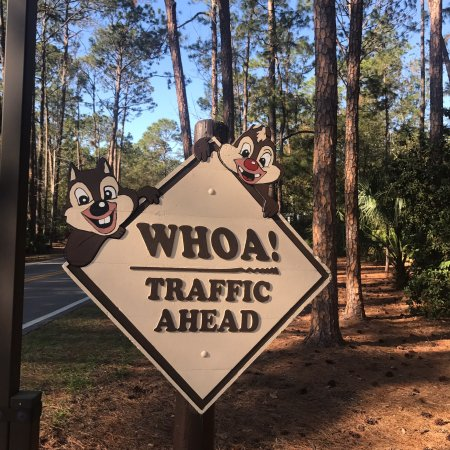 disney fort wilderness