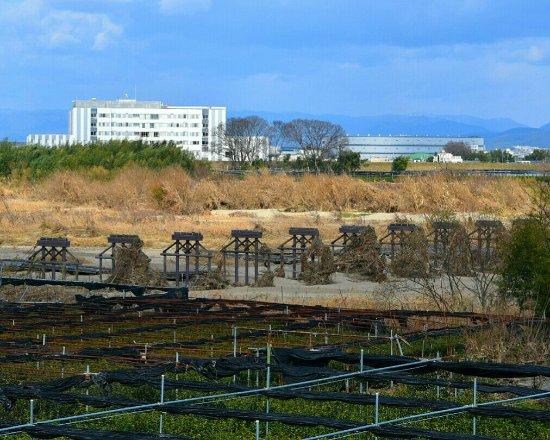 Nagarebashi: _20180102_104759_large.jpg