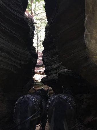 写真Lost Canyon Tours枚