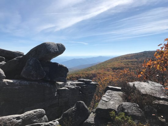Dolly Sods Wilderness Area: views