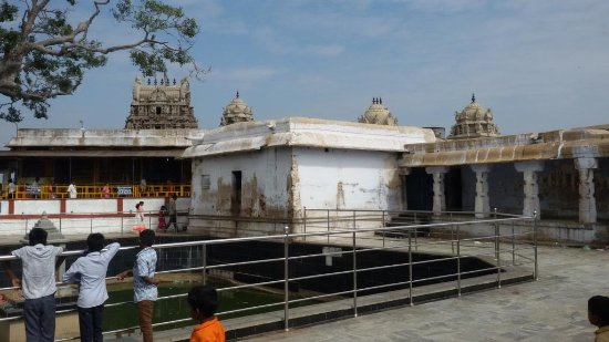 Sholinghur, Inde : Gopurams visible from Holy Tank