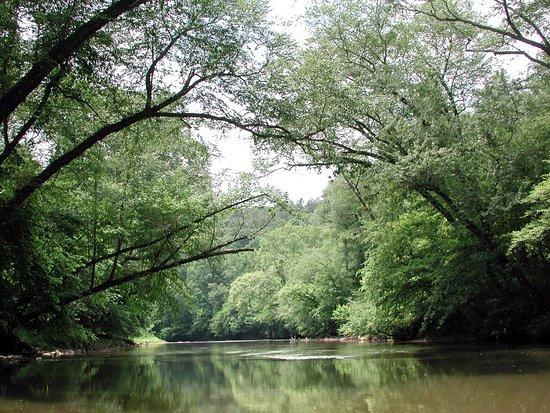 Dahlonega, GA: kayak section