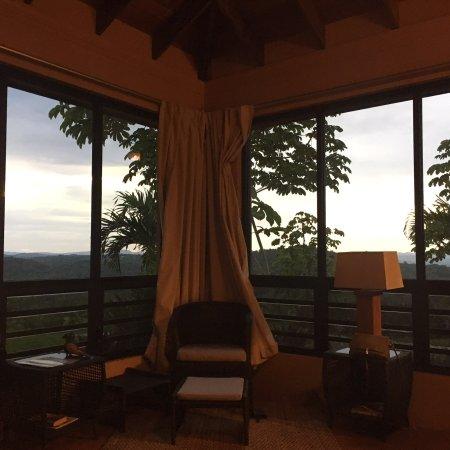 Amazing jungle villa