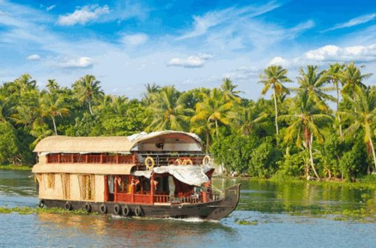 Private Full-Day Kerala Backwaters...