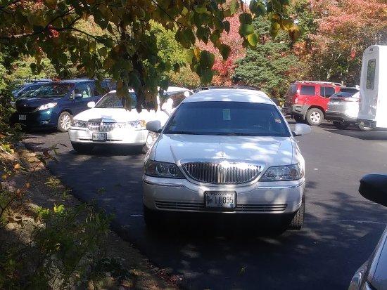 Crystal Coach Limousine: Foliage Tour