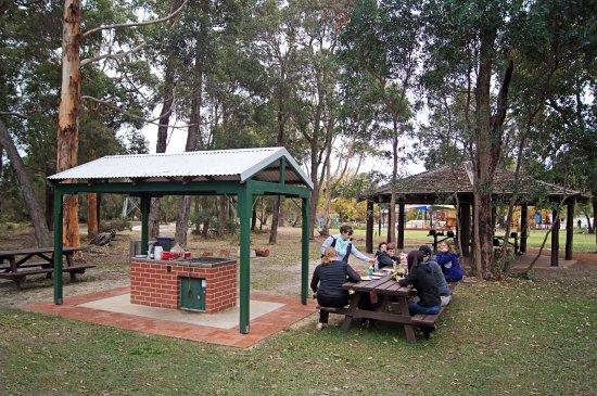 Picnic and BBQs - Picture of Manjimup Timber Park, Manjimup